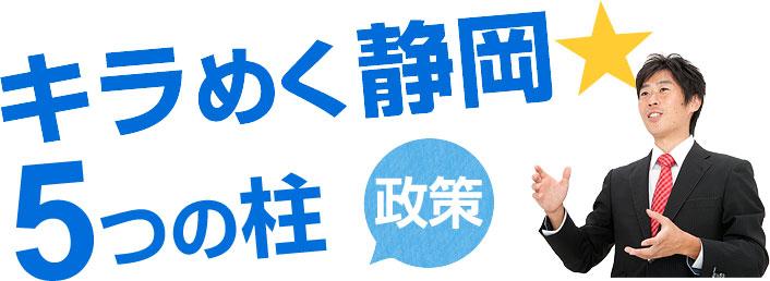 キラめく静岡 5つの柱 政策
